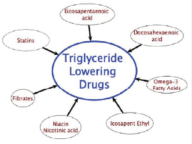 Drugs used for the treatment of hyper triglyceridemic.